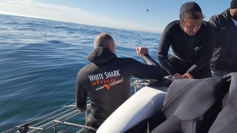 white shark africa wetsuit