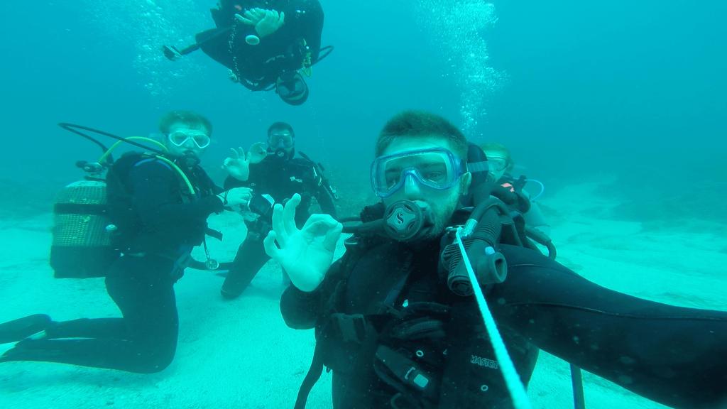 White Shark Africa Diving Mossel Bay